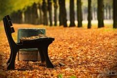 Herrenhausen im Herbst